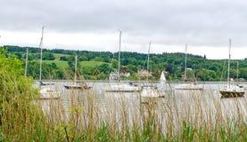 Betrachten durch Gräser den Booten auf See Windermere lizenzfreies stockfoto