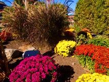 Betreten des Parks im Herbst Lizenzfreies Stockfoto