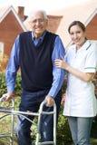 Betreuer, der älterem Mann hilft, in Garten unter Verwendung des gehenden Rahmens zu gehen stockbilder