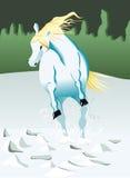 Betrieb des weißen Pferds Stockfotografie