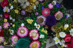 Betriebs- und der Blumetrockene Zusammensetzung stockfoto