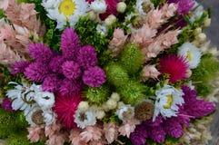 Betriebs- und der Blumetrockene Zusammensetzung stockbilder