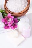 Betriebsmittel für Badekurort und Blumen Stockbilder