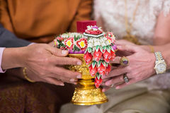 Betrothal. Ask for the hand of the girl in marriage Stock Image