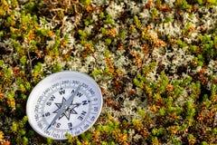 Betrouwbaar kompas op mos in toendra Concept voor het reizen en actieve levensstijl stock afbeeldingen
