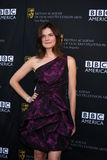 Betsy Brandt Royalty Free Stock Photography