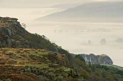 Bett des Nebels Lizenzfreie Stockfotos