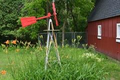 Bett von Daylilies auf Minnesota-Bauernhof Stockfotos