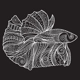 Betta Fish Zenart Stylized Photos stock