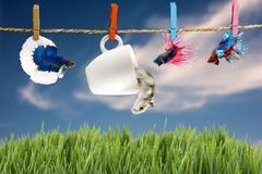 Betta and Hamster hanging on the clothesline Royalty Free Stock Photos