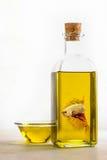 Betta Siamese fighting fish in olive oil bottle Stock Photo