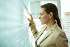 Better perspective. Pleasant midage business woman looking outside through jalousie Stock Photography