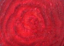Betterave de macro de texture Image libre de droits