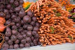 Betteraves et légumes à racine de carottes Photos stock