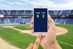 Betting on baseball game. Betting man through his smart phone in a baseball stadium Stock Photos