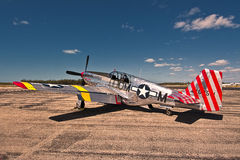 The Betty Jane, P51 C Mustang royalty free stock images