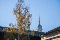 Betulla e cupola Fotografia Stock