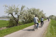 Betuwe的骑自行车者 免版税库存图片