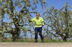 四轮溜冰者和树与开花在Betuwe 免版税库存照片