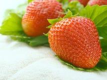 Beuaty des fraises Images stock