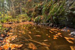 Beukbladeren in de kreek onder de rots in de herfst Stock Foto's