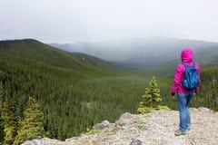 Beundra regnbågesikt royaltyfri foto