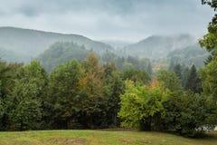Beunruhigende Landschaft mit mit Gras bedeckten Stadtränden, Walddickicht und Lizenzfreie Stockfotos
