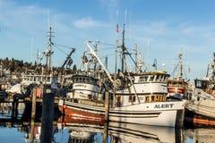 Beursseiners bij vissers` s terminal wordt vastgelegd in Seattle Washington dat royalty-vrije stock foto's