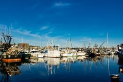 Beursseiners bij vissers` s terminal wordt vastgelegd in Seattle Washington dat stock foto's