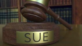 Beurteilen Sie ` s Hammer, der den Block mit SUE-Aufschrift schlägt Wiedergabe 3d Lizenzfreie Stockbilder