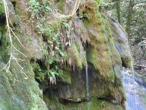 BeusniÅ£a, de meest spectaculaire waterval in Roemenië stock afbeeldingen