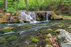 Beusnita stream, Romania Stock Photo