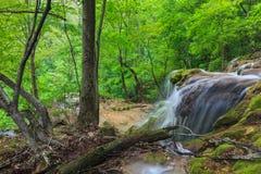 Beusnita stream, Romania Stock Image