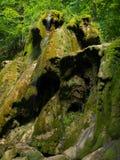 Beusnita vattenfall i den Beusnita nationalparken Royaltyfri Foto