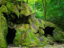 Beusnita vattenfall i den Beusnita nationalparken Royaltyfri Fotografi
