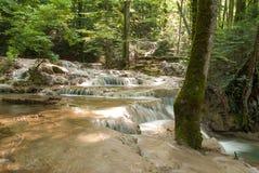 Beusnita-Wasserfall Karpaten-Berge, Rumänien Stockfotos