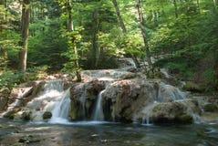 Beusnita-Wasserfall Karpaten-Berge, Rumänien Stockbilder
