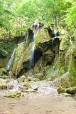 Beusnita-Wasserfall Karpaten-Berge, Rumänien Lizenzfreie Stockfotografie