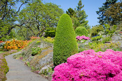 Beutiful garden in the spring. A path meanders through a beautiful garden with colorful blooms and green foliage on a sunny day Royalty Free Stock Image