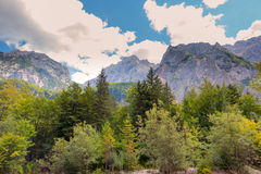 A beutiful landscape in the mountains, clouds above peaks and forest in foreground Stock Photography