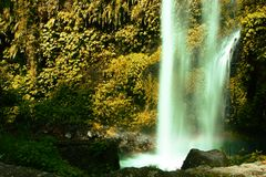 Beutiful View at Tiu Kelep Waterfall NTT Indonesia. Beutiful View at Tiu Kelep Waterfall NTT Lombok Sumbawa Indonesia Royalty Free Stock Image