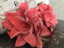 Beutifull czerwone róże stwarzają ognisko domowe dekorację Obraz Royalty Free