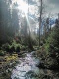 Beutifull-Fluss stockbild