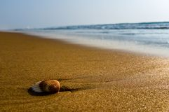 beuty海的海滩 免版税库存图片