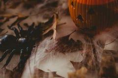 Beva in contenitore della lanterna della presa o con le decorazioni su fondo bianco Fotografia Stock