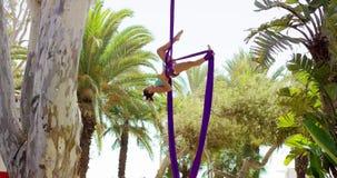Bevallige vrouwelijke acrobatische danser stock videobeelden