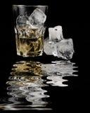 Bevanda alcolica Fotografie Stock