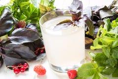 Bevanda analcolica dell'agrume fresco Immagini Stock