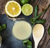 Bevanda con aloe vera ed i limoni Immagini Stock Libere da Diritti