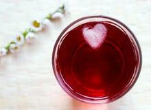 Bevanda con il cubo di ghiaccio Fotografie Stock
